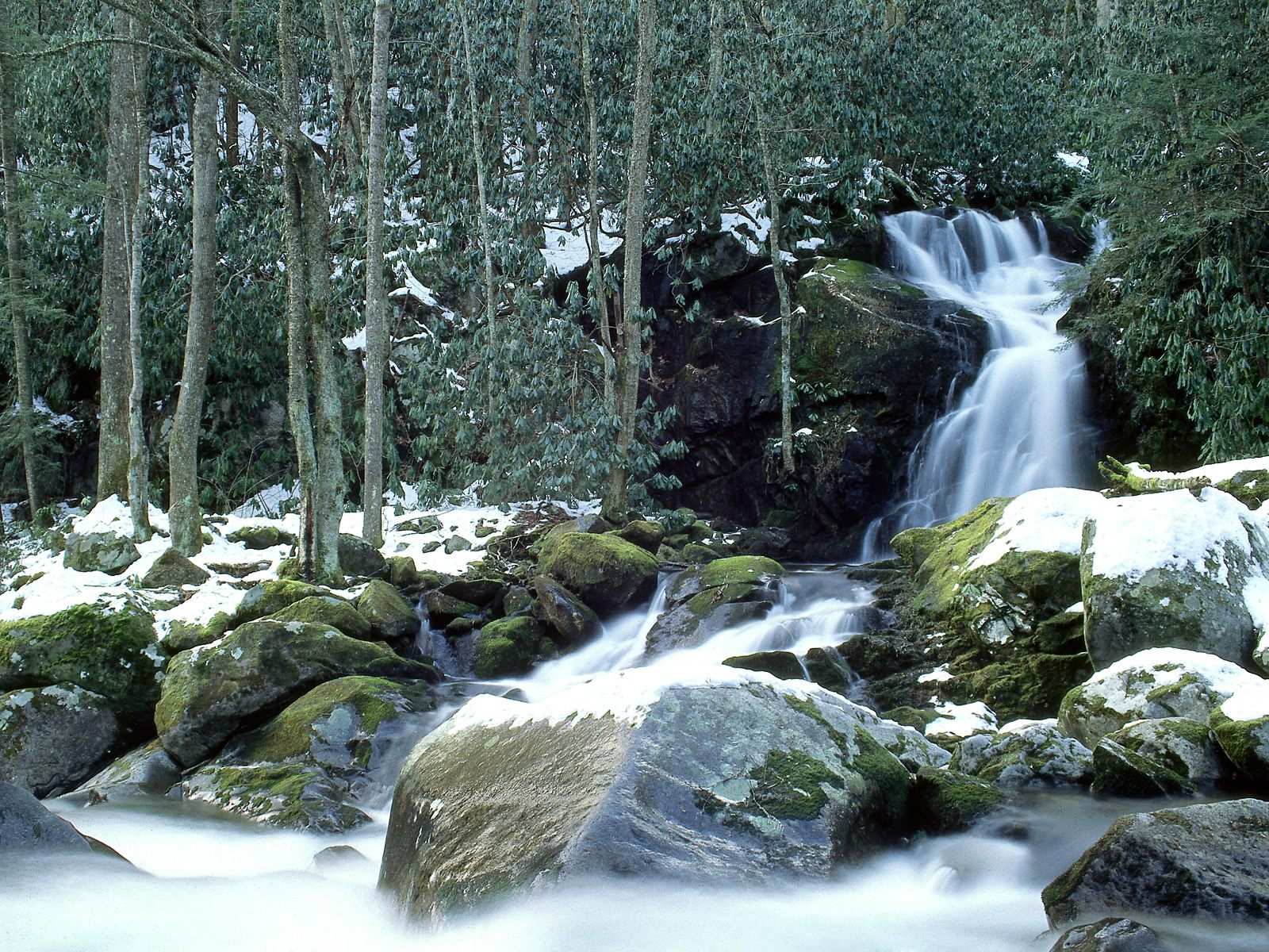 Great Smoky Mountains Wallpapers Download Free Mouse Creek