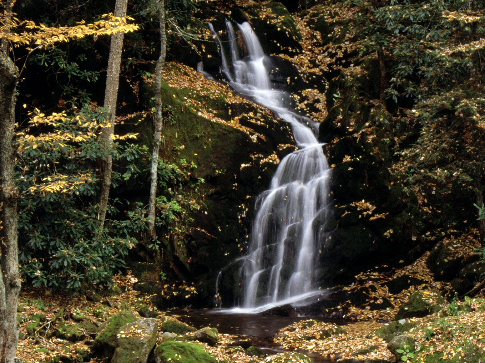 Mouse Creek Falls, Great Smoky Mountains, North